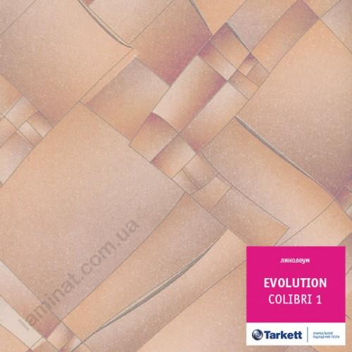 Линолеум Evolution Колибри 1