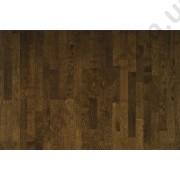 На фото Дуб классик коричневый