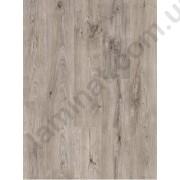 На фото Loft Grey Oak