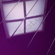 На фото Фиолетовый