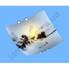 На фото Настенно-потолочный светильник Blitz 2973-21