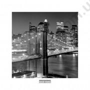 На фото Бруклинький мост