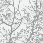 На фото Обои P+S Color Symphony Trees 13264-32