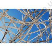 На фото Обои AS Creation Nature 037050