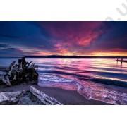 На фото Обои AS Creation AP Digital 2 470455